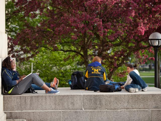 Image of Students Studying Outside