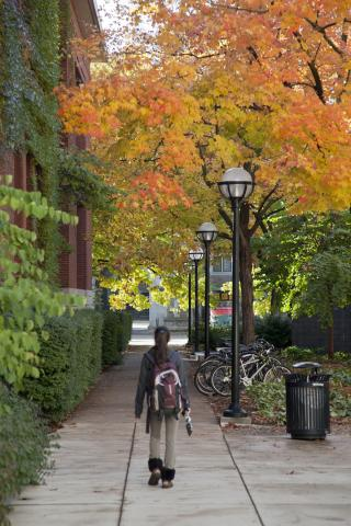 Ann Arbor trees in the fall by Tappan Hall