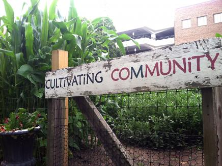 Students and volunteers from Cultivating Community plant the annual Ginsberg Center Garden.