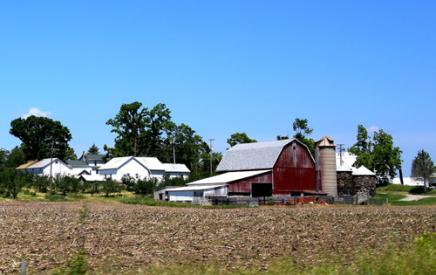 A farm with barns