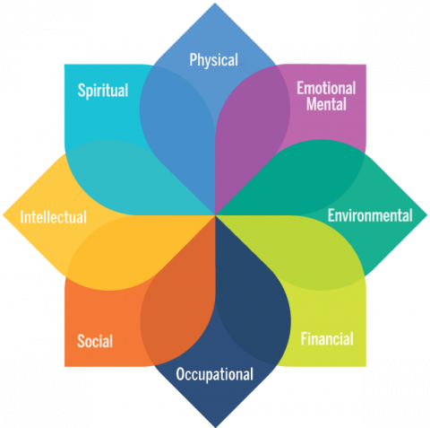 Model of Personal Well-Being; Physical, Emotional, Environmental, Financial, Occupational, Social, Intellectual, Spiritual