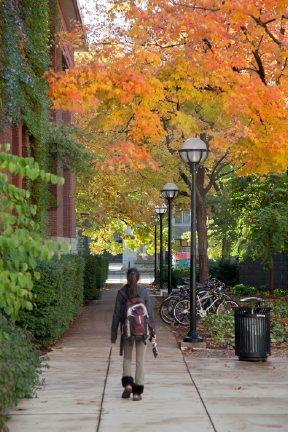 a student is walking under fall trees