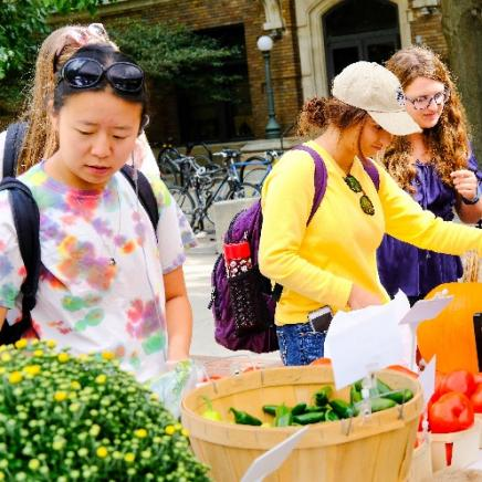 Students at UM Farmers Market